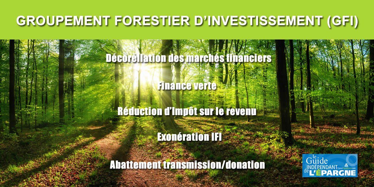 Finance verte : investir dans des forêts, tout en réduisant vos impôts ?